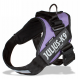 IDC Powerharness Purple