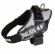 Silver Collar IDC Powerharness