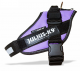 IDC Powerharness Purple - Size 0