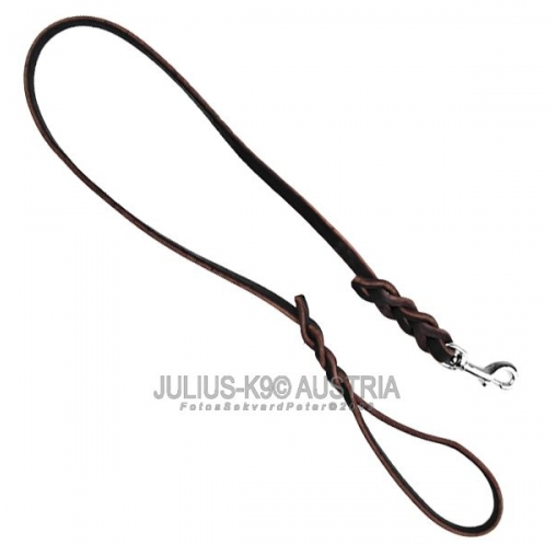 Braided Leather Dog Leads With Handle Metal Catch