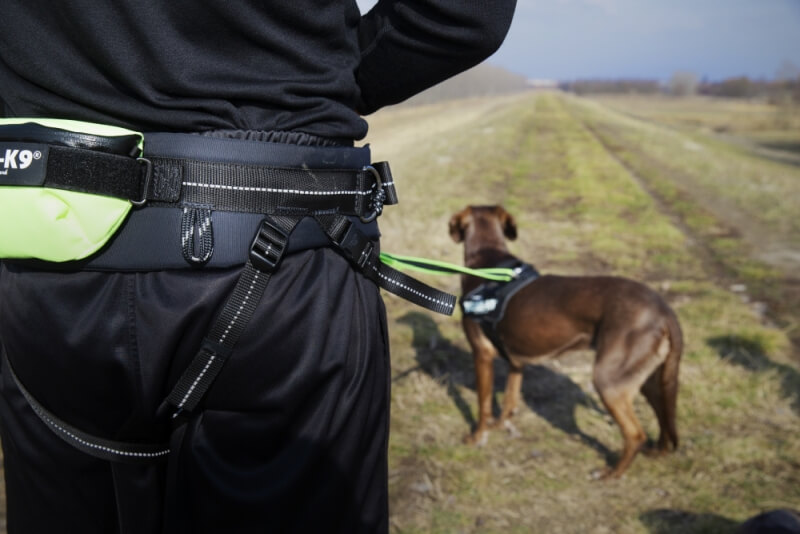 jogger wearing a running belt with his dog