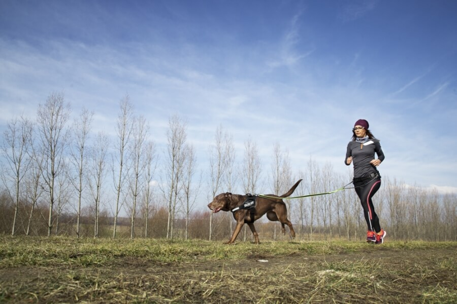 dog and jogger running together in a field