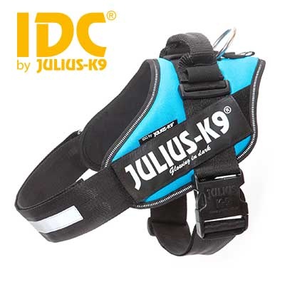 IDC Powerharness Aquamarine