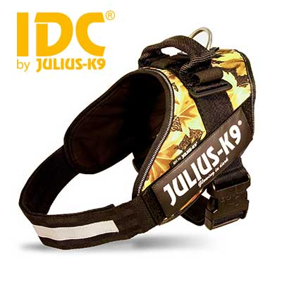 IDC Powerharness Autumn Touch