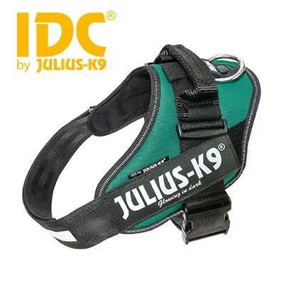 IDC Powerharness Dark Green