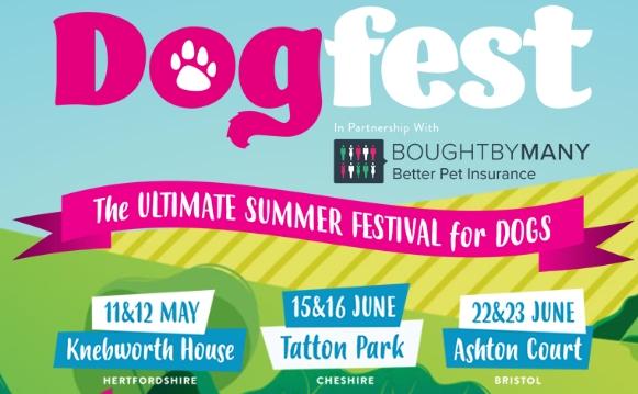 DogFest 2019 Cheshire