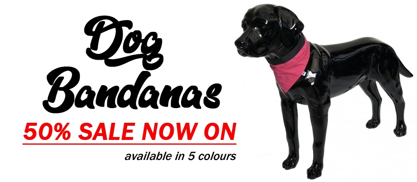 High Quality Dog Harnesses, Collars and Gear | Julius K9 UK