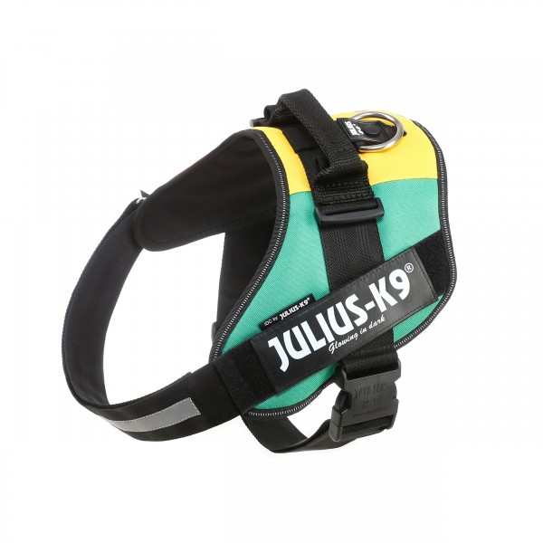 IDC Powerharness Pan African