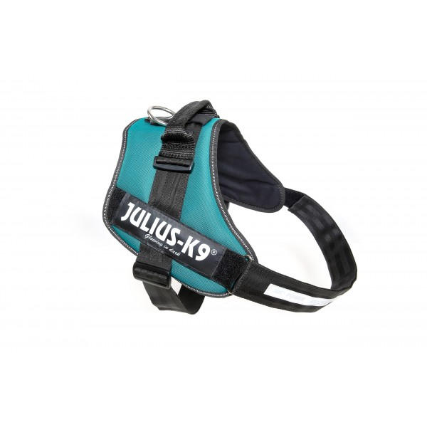 IDC Powerharness Petrol Green