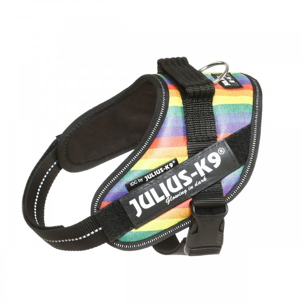 IDC Powerharness Rainbow