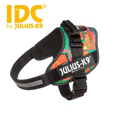IDC Powerharness Reggae