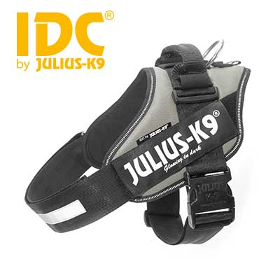 IDC Powerharness Silver